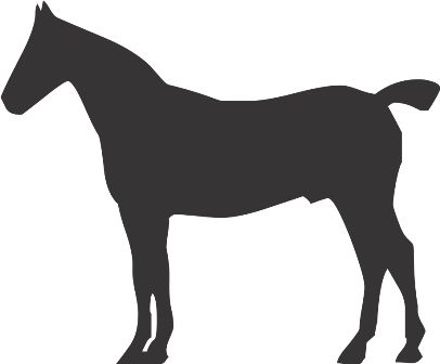 Силуэт лошади T