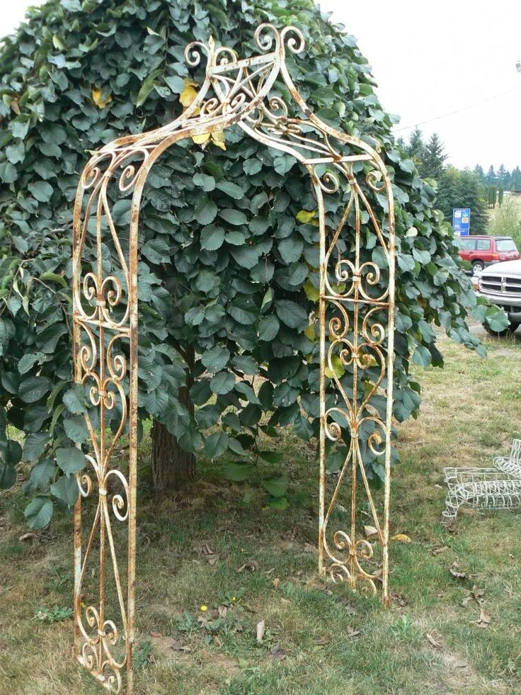 metal arbor | ... Iron Home and Garden Decor : Heavy European-Style Wrought Iron Arbor