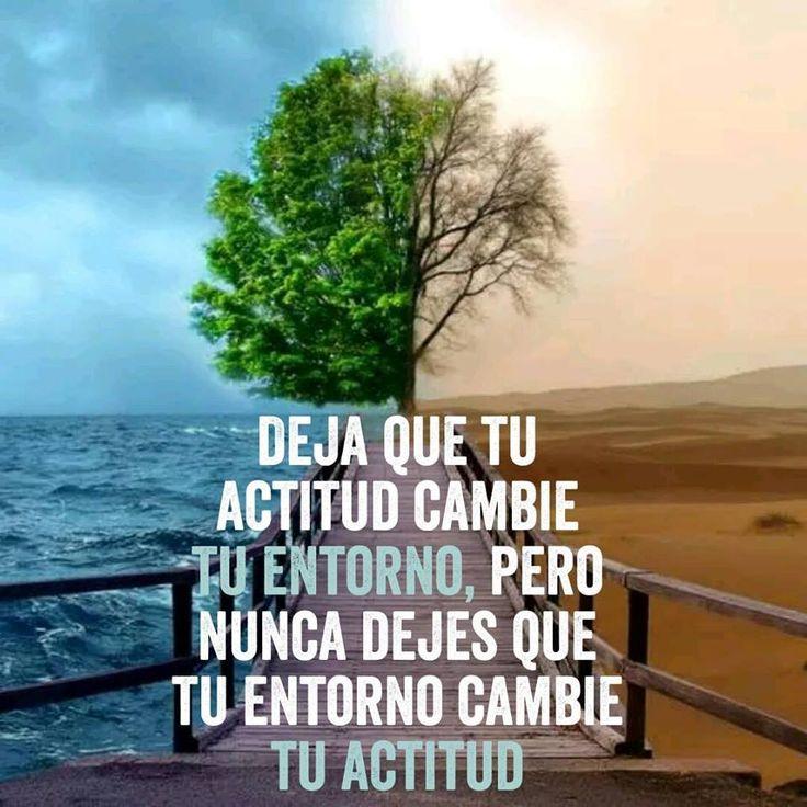 """""""Deja que tu actitud cambie tu entorno, pero nunca dejes que tu entorno cambie tu actitud. Muy buena frase para hoy. Haz un """"Me gusta"""" RebecaSegebreOficial en Facebook y encontraras otras frases como estas todos los días"""