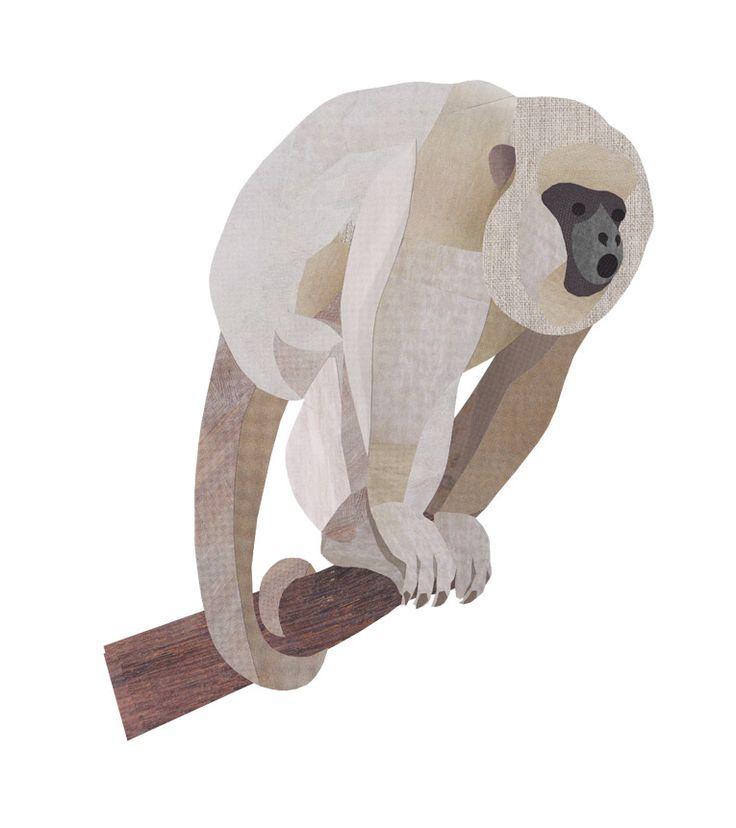 Collage Howler Monkey illustration by wildlife illustrator, Jonathan Woodward. #Collage #Monkey
