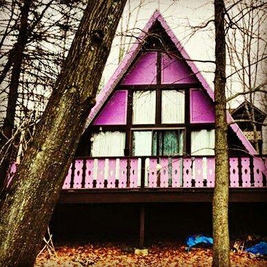 Purple forest house. Elk Mountain PA