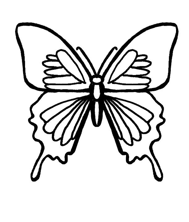 FREE Butterfly Coloring Pages On Leaf