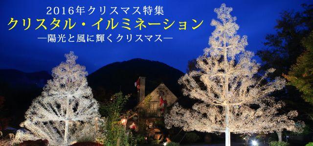 2016年クリスマス特集クリスタル・イルミネーション ─陽光と風に輝くクリスマス─