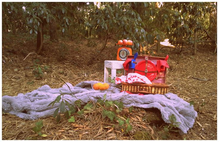 Details of another romantic picnic.  Read more: http://eraumavez-osonhoperfeito.blogspot.pt/search/label/Piquenique%20rom%C3%A2ntico