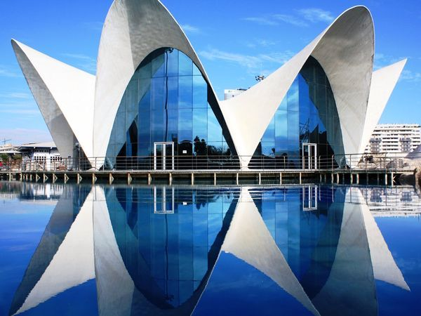 The Valencia Aquarium in spain reflects off the water causing your eyes to follow the lines of symmetry.