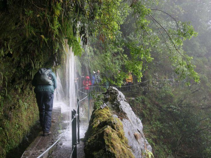 Some of the levadas, like Levada do Caldeirão Verde, pass under waterfalls.