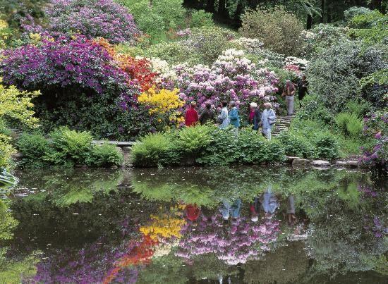 Sofiero Slott: Garden and park at Sofiero