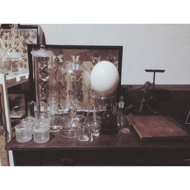 yanakaさんの、古道具,古道具 什器,雑貨,標本,アンティーク,ガラス,棚,のお部屋写真