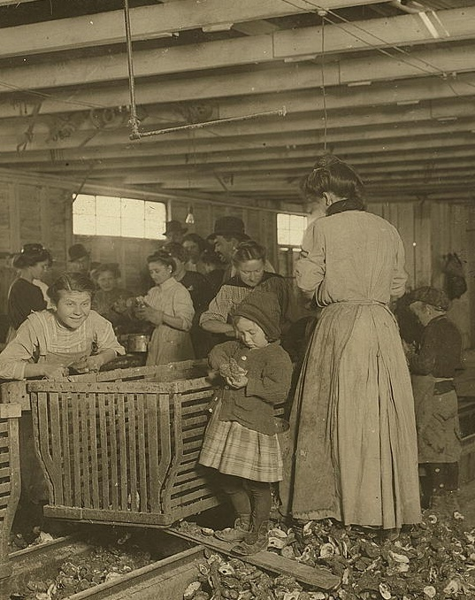 'Four-year-old Mary shucks two pots of oysters a day at Dunbar. She also tends the baby when she's not working! The boss said that next year Mary will work steady as the rest of them. The mother is the fastest shucker in the place. Earns 1.50 a day. Works part of the time with her sick baby in her arms. Father works on the dock. Location: Dunbar, Louisiana. 1911.'