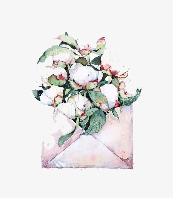 Открытки с цветами хлопка