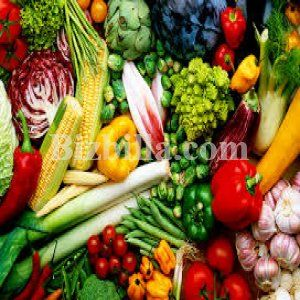 Fresh Vegetables By SGT EXPORT PTY LTD From South Africa