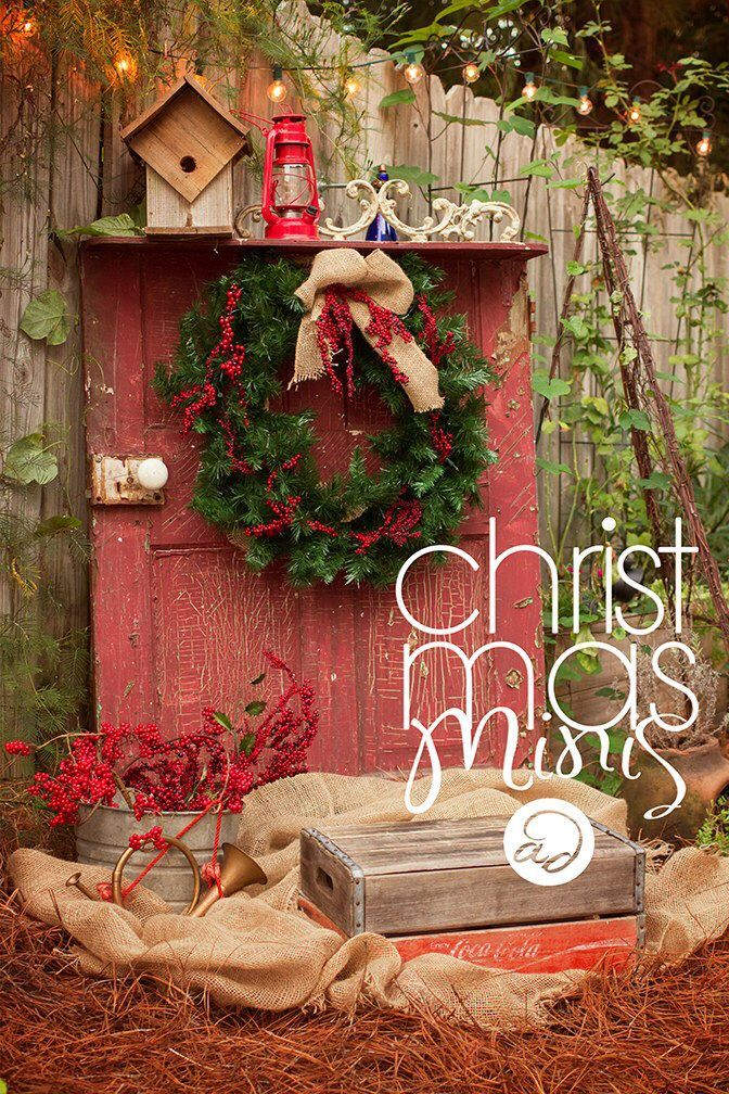 Backyard Haven | Christmas mini sessions | outdoor portraits | styled Holiday props