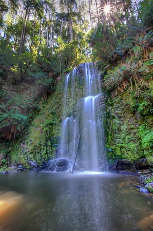 Beauchamp Falls in Otway National Park (off the Great Ocean Road). Short but strenuous hike to reach the falls but a very nice spot.
