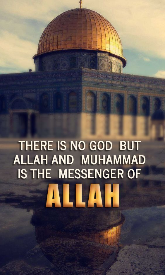 There is no #God but #Allah and #Muhammad is the #Messenger of Allah.  #islam #islamicquote  #faith #religious  #quranmajeed  #quranicquotes