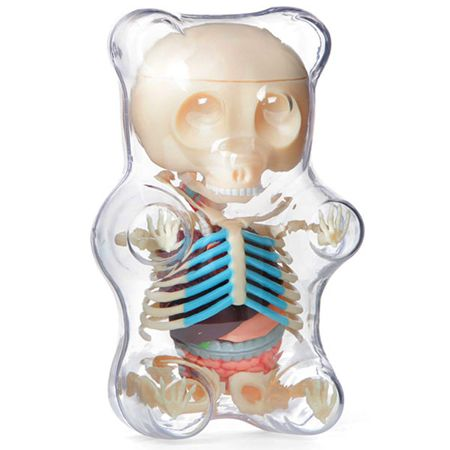 """Gummi Bear Anatomy"" | Clear Edition | Artist Jason Freeny | Image 1 of 2"