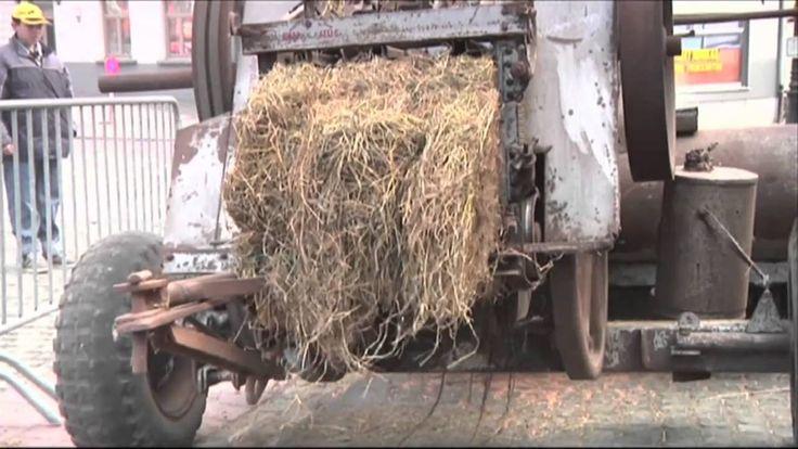Vette Veemarkt Zomergem - Oude Landbouwmachines
