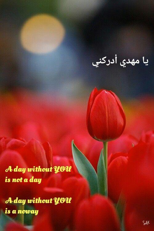 Ya mahdi; imam mahdi; ya saheba al zanan; shia; shia poem; يا مهدي ; يا صاحب الزمان