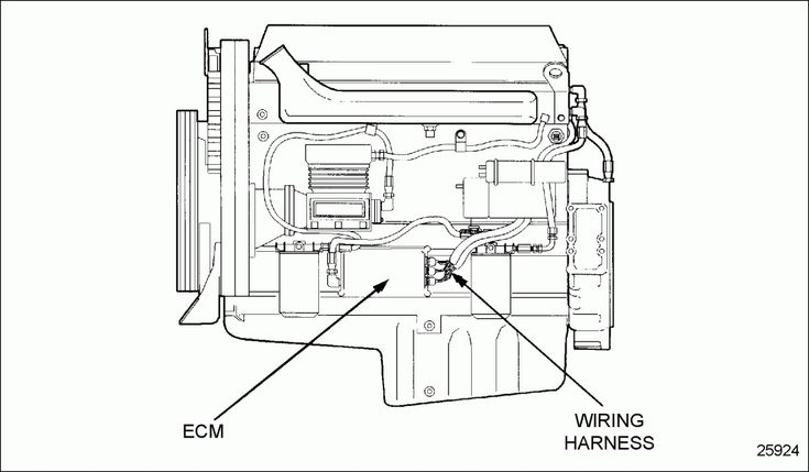 1996 Ford F150 Engine Wiring Diagram And Wiring Diagram For Ford F Ecm In 2020
