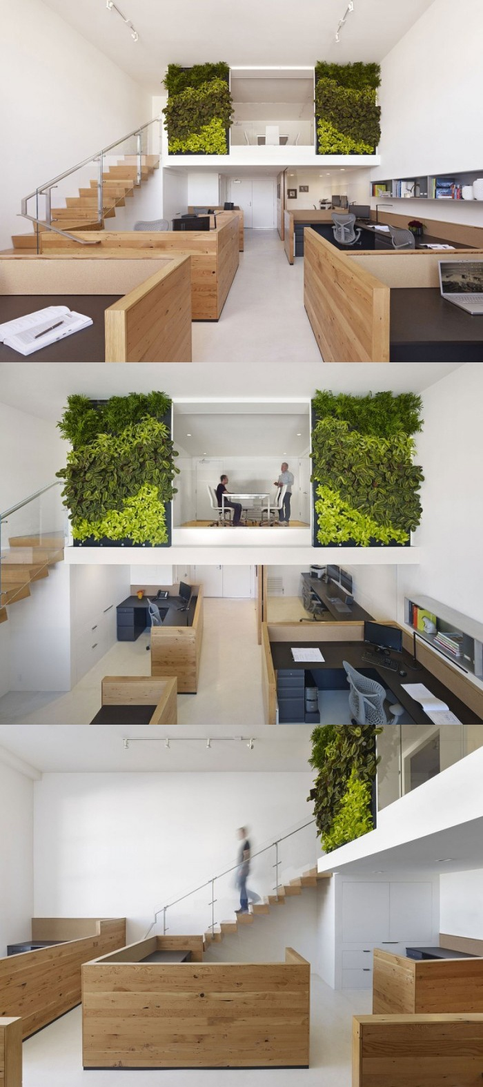 Isn't it look like forest? cool! #cubicles