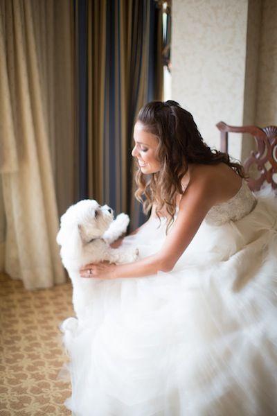 Bride + Dog.