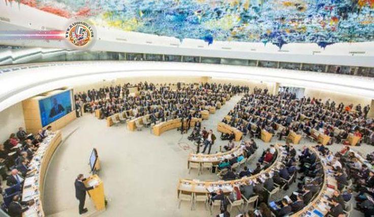 ONU pede à Venezuela que pare com violência e assédio a opositores. O alto comissário de Direitos Humanos das Nações Unidas emitiu um comunicado nesta sexta