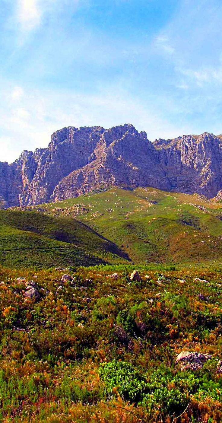 Visiting, #Stellenbosch in the #Cape #Winelands of #South #Africa. http://backpacking-travel-guide.blogspot.com/2014/05/stay-in-stellenbosch-in-cape-winelands-South-africa.html