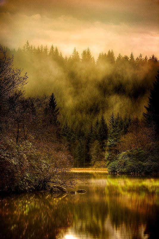 Autumn morning Mists, Loch Ard, Trossachs, Scotland