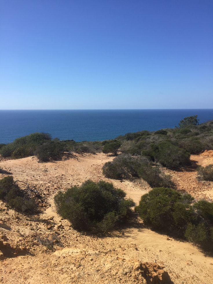 Torrey Pines Hiking Trail- great views!
