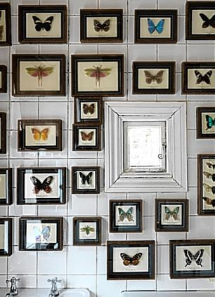 framed insect specimens in the bathroom of the london flat of issa designer danielle helayel