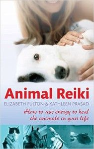 Animal-Reiki-How-to-use energy to heal the animals in your life
