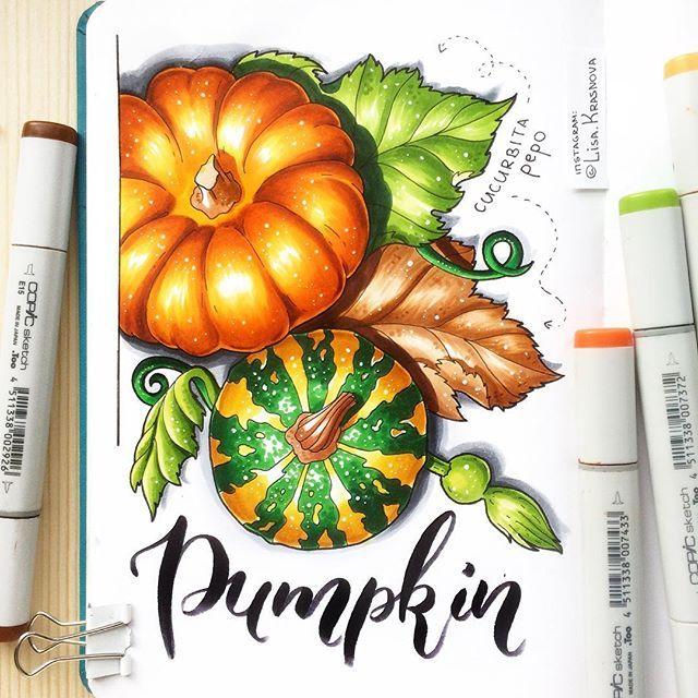 Pumpkin #sketchbook #copicart #markers