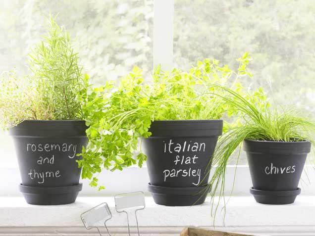 Impossible-to-kill herb garden: Gardens Ideas, Indoor Herbs, Chalkboards Planters, Growing Indoor Pots Herbs, Chalkboards Paintings, Herbs Gardens, Gardens Tips, Gardens Pots, Paintings Pots