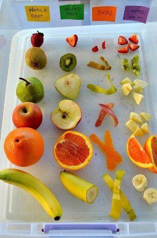 fruits sensory