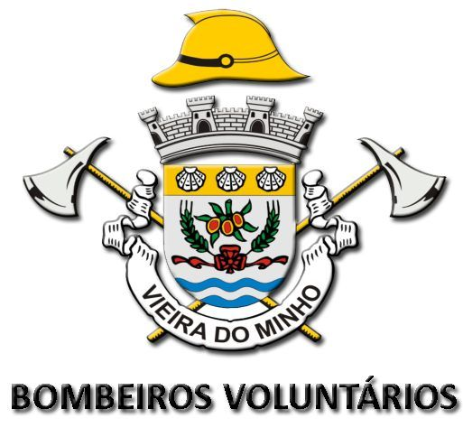 B. V. VIEIRA DO MINHO