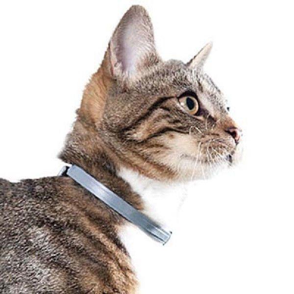 Cat Flea Collar Seresto