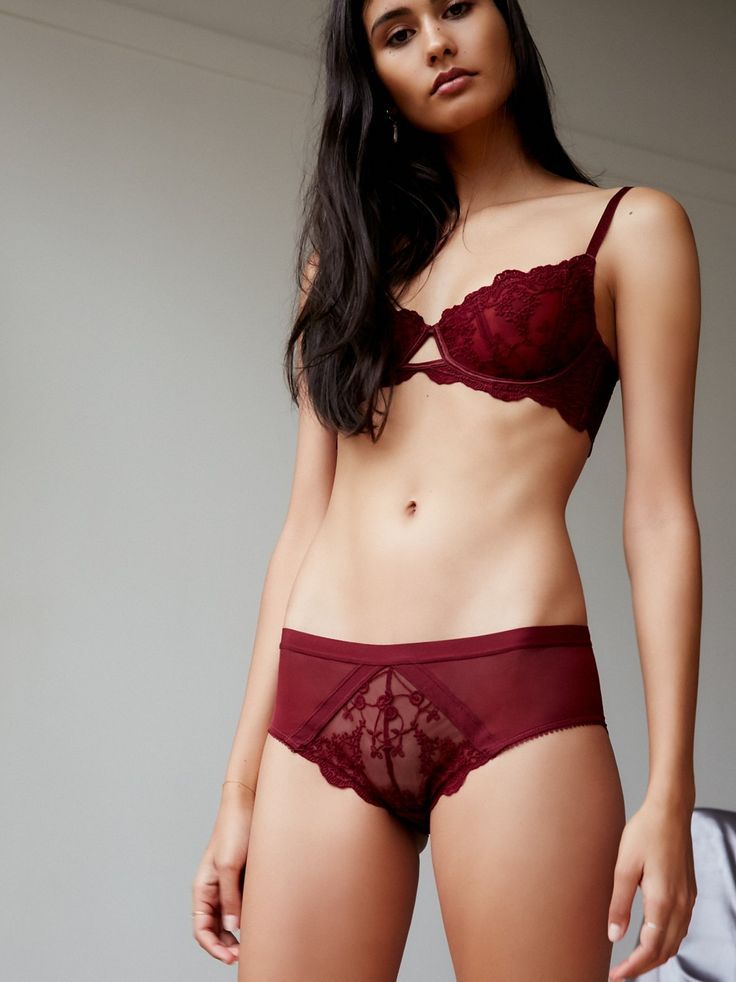 Daydreamer Hipster | Sheer mesh hipster undies with delicate floral embroidery and scalloped trims. Lined.