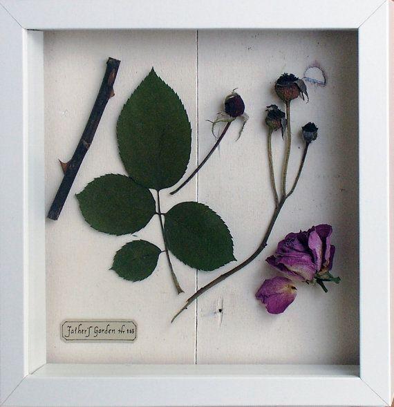 Rose Seasons Shadow Box by PlantsAndPatterns on Etsy