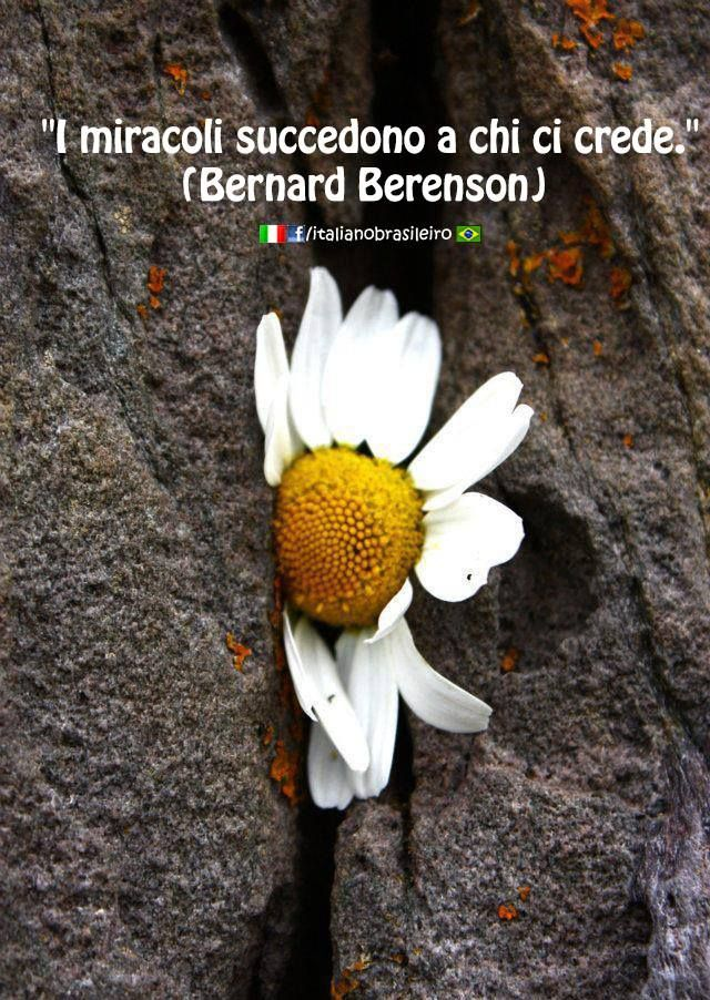 """I miracoli succedono a chi ci crede"" (that you believe in miracles) (#Bernard #Berenson)"