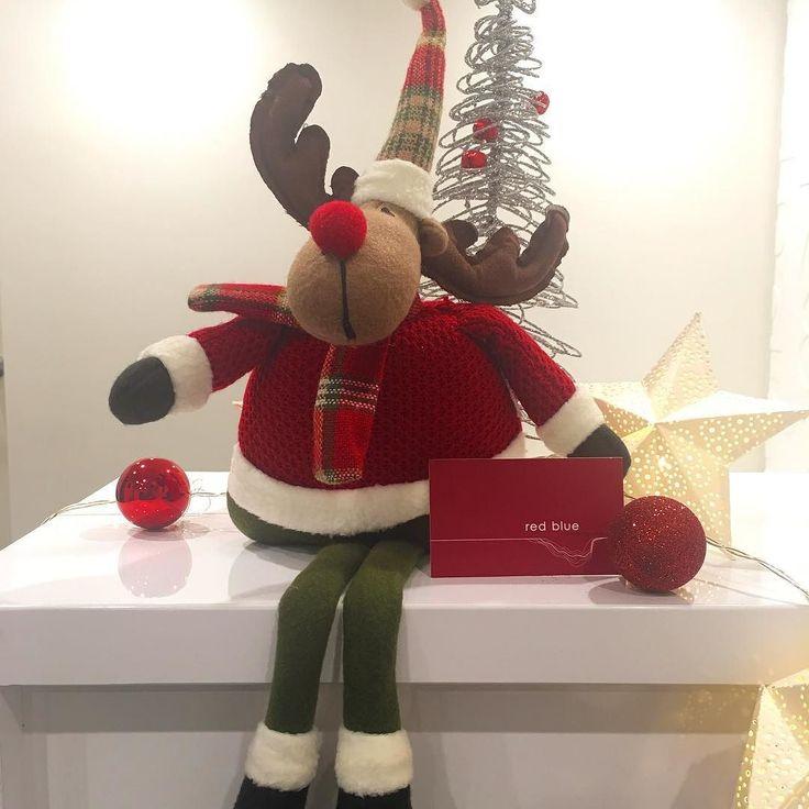 Time to start the carols... #christmas #architecture #design #reindeer #carols #office #carolsallyearround