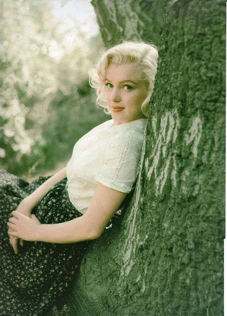 Marilyn mg_tree_Weston_1953 by thefoxling, via Flickr