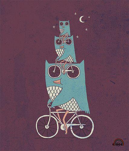 cycling owls