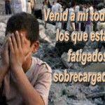 EVANGELIO DE HOY: SOY MANSO Y HUMILDE DE CORAZÓN Solemnidad del Sagrado Corazón de Jesús (A)