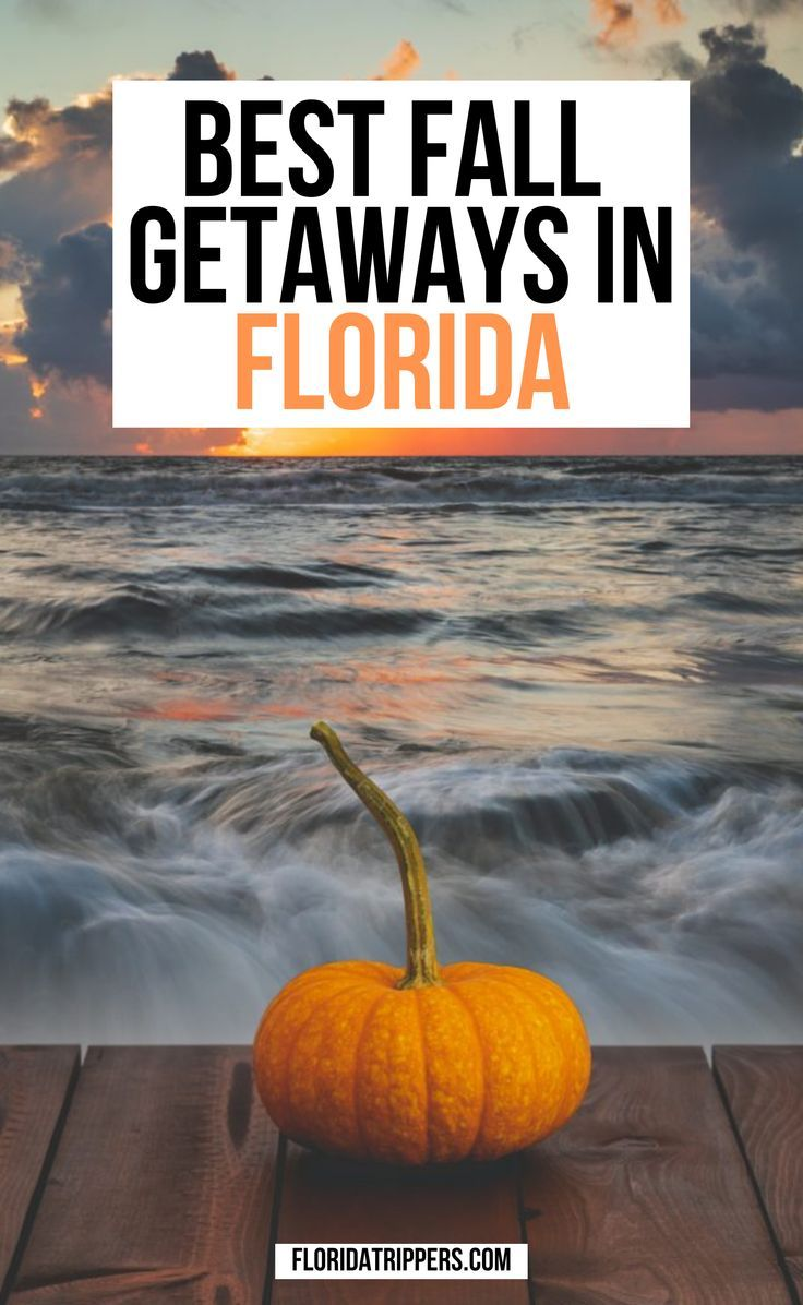 Florida In Fall What To Do And Where To Go In 2020 Travel Usa Fall Travel Destination Usa Travel Guide