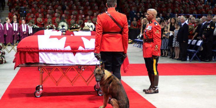Fallen Mountie's Dog Cries At Foot Of Casket