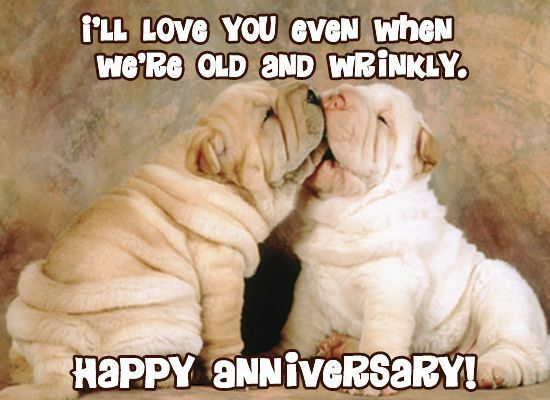 I Will Love You Even When We Are Old And Wrinkley
