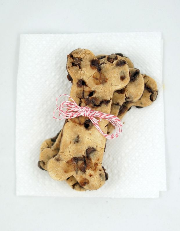 """10 """"Christmas"""" Cookie Recipes for Dogs (that you can realistically cook all year round!)"""