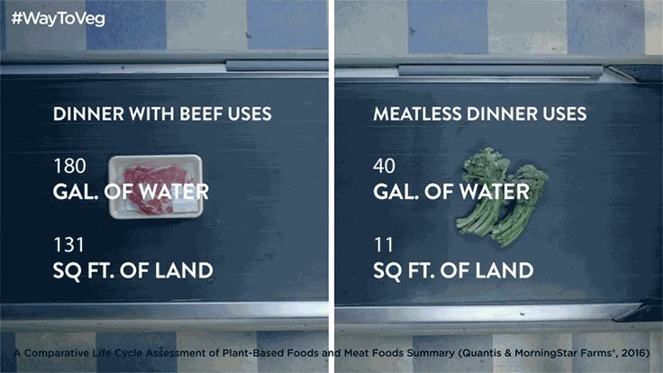There's a whole lot of Earth-helpfulness that comes with eating veggies. #WayToVeg