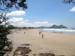 Image result for PAUANUI IMAGE
