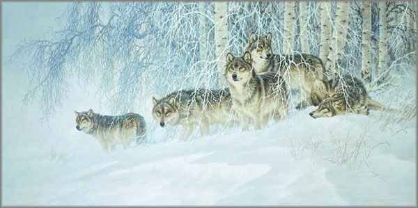 I am blessed to own several Larry Fanning wolf prints