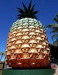 The Big Pineapple, Sunshine Coast, QLD